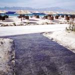 California Field Stone